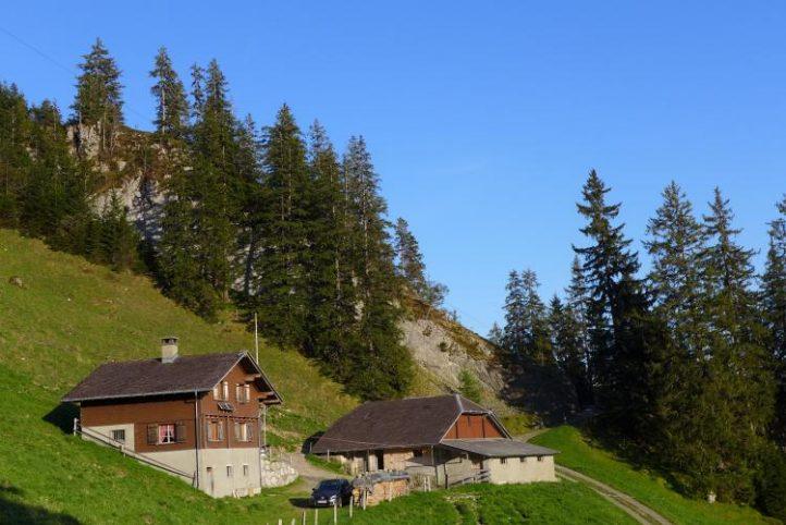 Alp Schwandi/Laub (OW)