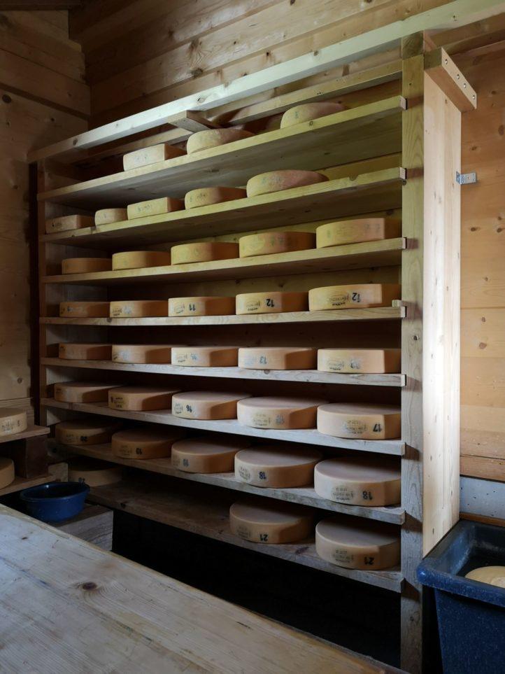 Viel Milch und guter Käse