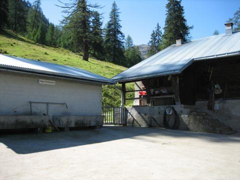 Alpe Formazzora (TI)